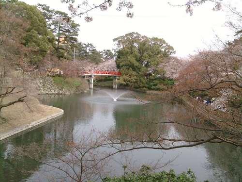 0328-15岡崎城公園.jpg